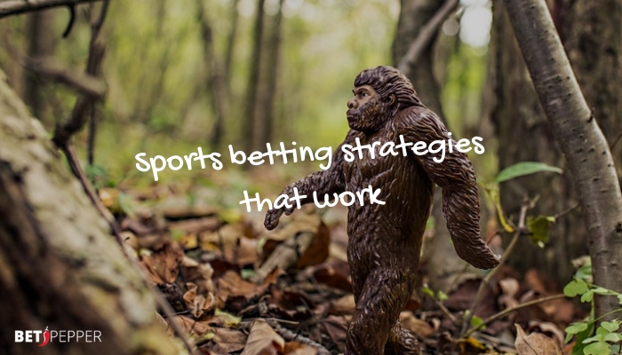 sports betting strategies that work
